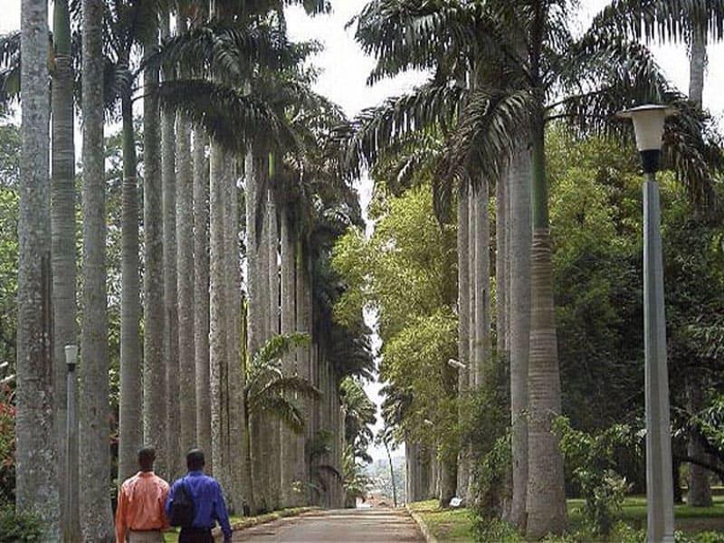 Ботанический сад Абури