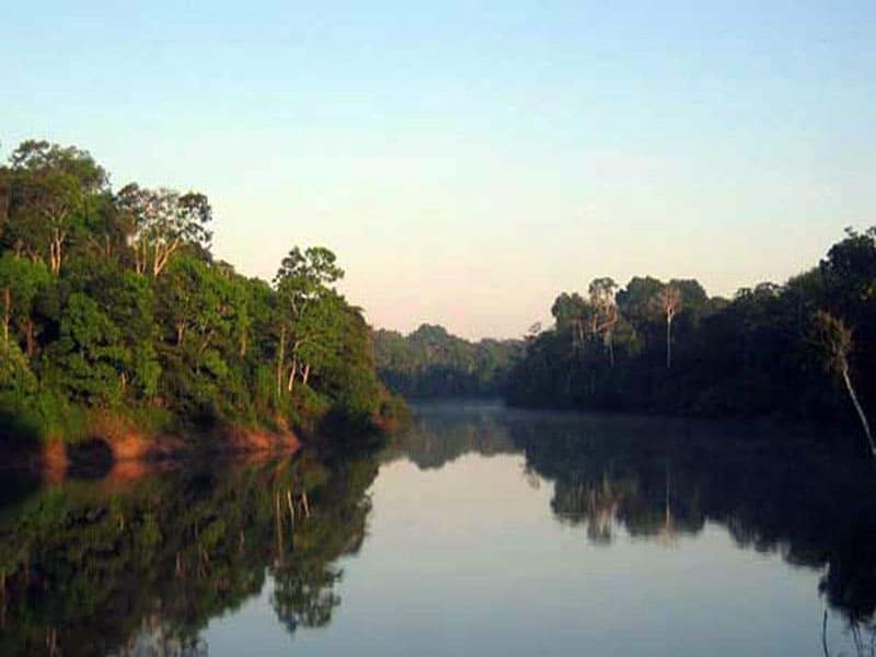 Фото реки Амазонки