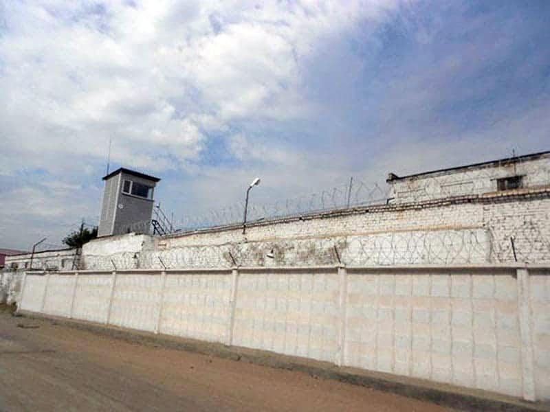 черный дельфин тюрьма картинки
