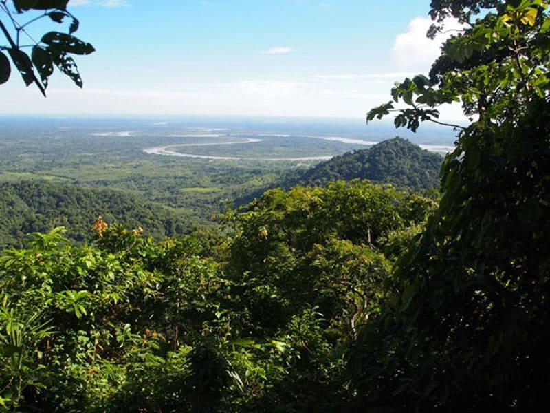 Описание национального парка мадиди