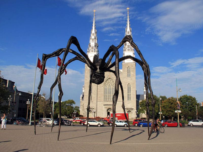 Памятник пауку