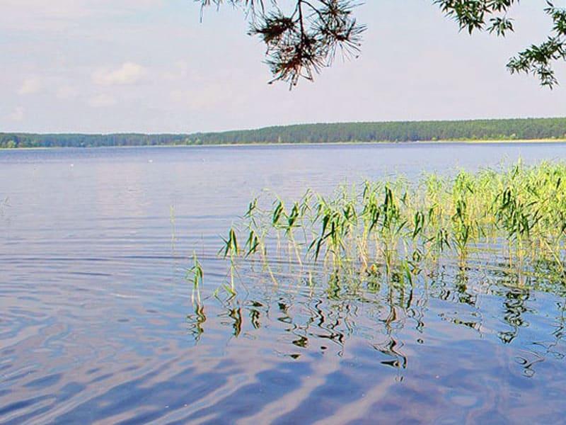 Фото озера Селигер