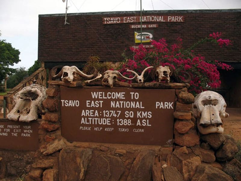 Национальный парк Восточный Цаво